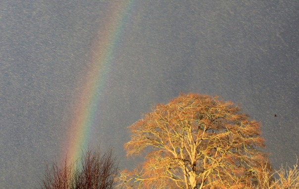 After no wintery weather at all, sleet and a snowbow just in time for a god day out.